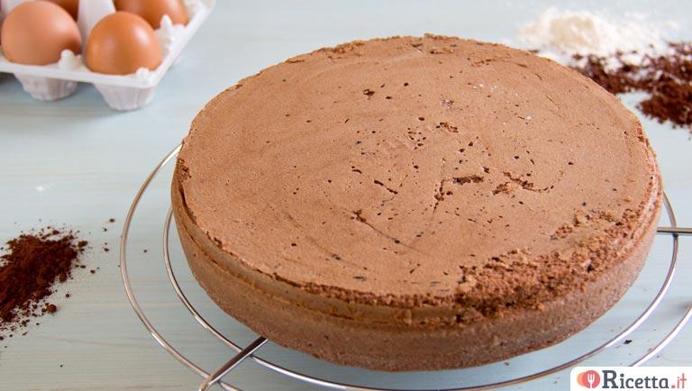 Ricetta Pan Di Spagna Al Cioccolato Bimby.Ricetta Pan Di Spagna Al Cacao Consigli E Ingredienti Ricetta It